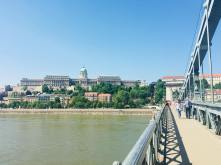 Chain bridge and Buda Castle - Budapest