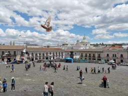 Plaza San Francisco, Quito - Ecuador