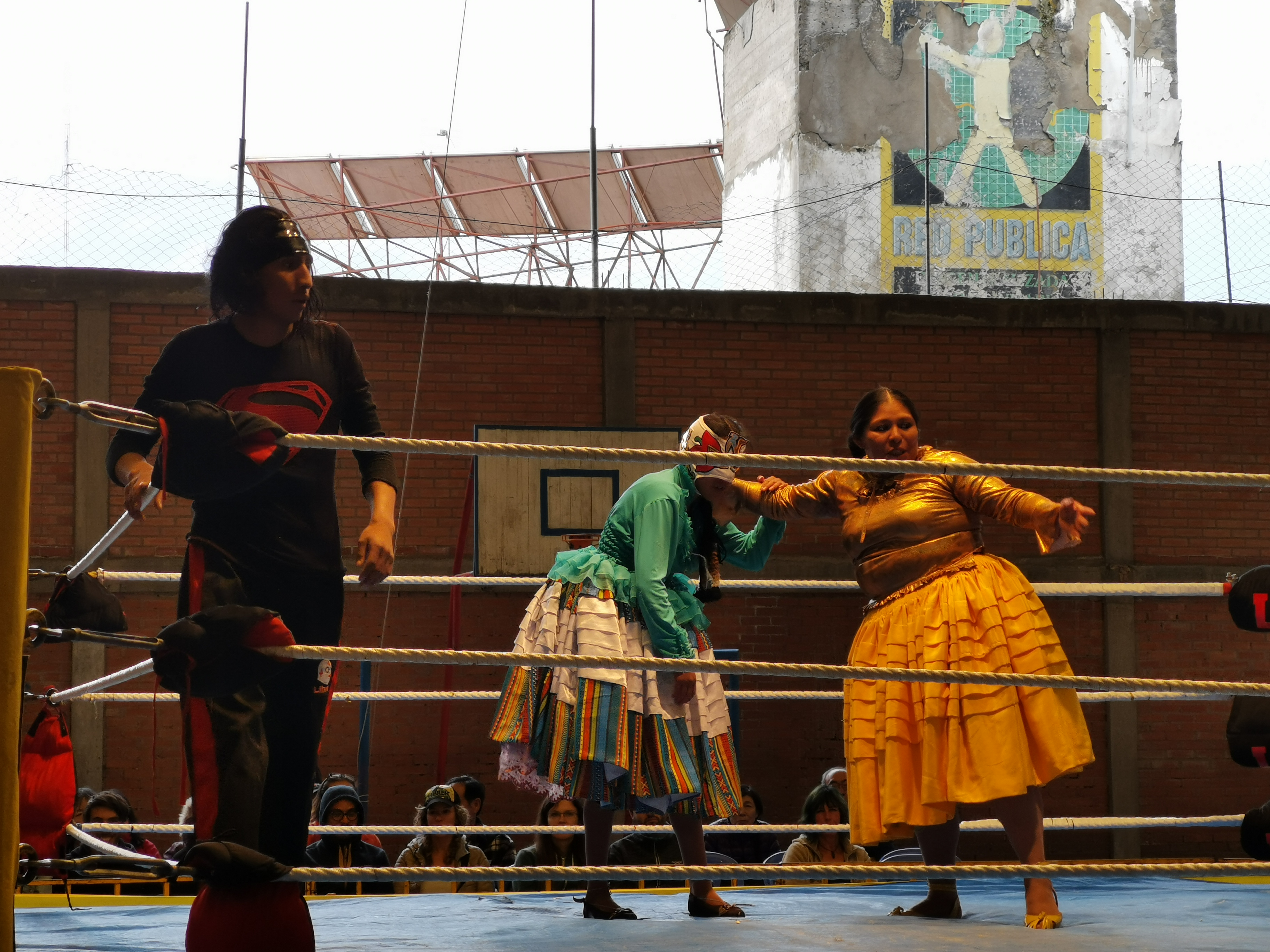 Cholitas in traditional outfit wrestling in a ring
